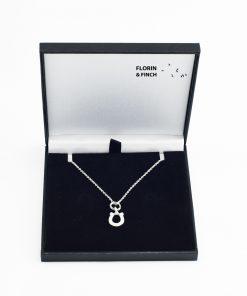 Silver Horseshoe Necklace Case