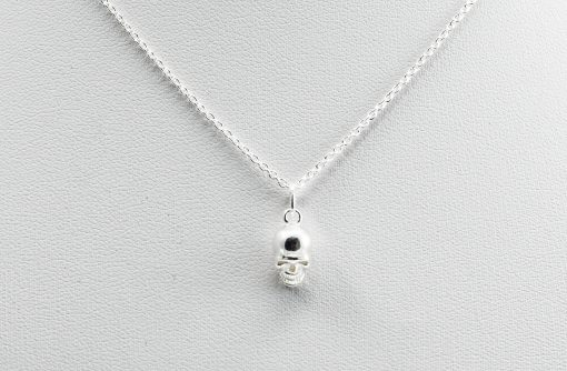 Silver Skull Charm Necklace Chain